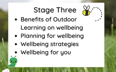 Level 3 – Embedding Wellbeing