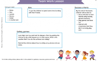 Team Work Lesson Plan EY