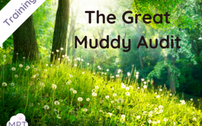 The Great Muddy Audit