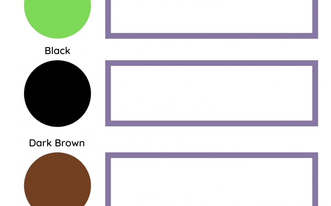 Autumn Colour Spotter Sheet Activity