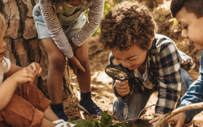 Free Outdoor Learning Resources