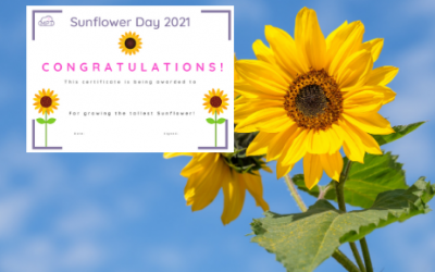 Sunflower Day Certificate