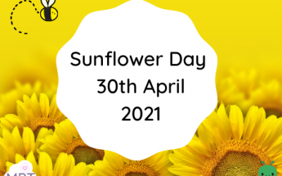 Sunflower Day 30th April 2021