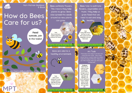 How do Bees Care for us? (Outdoor eBook)