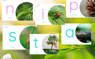 Phase Two Phonics Nature Posters