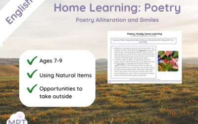 Poetry Alliteration and Similes (Home Learning)