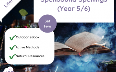 Spellbound Spellings – Year 5/6 Spellings (Set Five)
